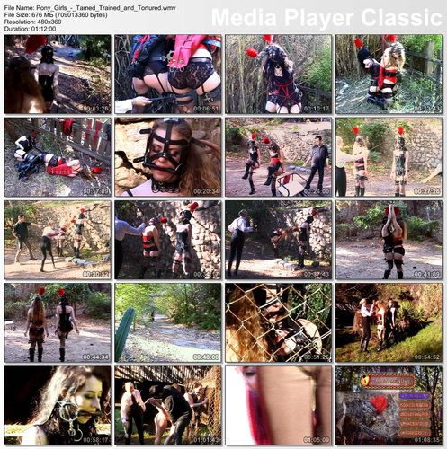 Pony Girls - Tamed Trained & Tortured