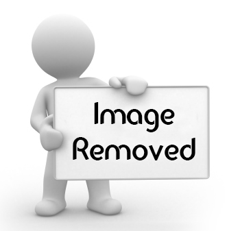 Converting IMG TAG in the page URL ( Url Img.link IMG 2 ...