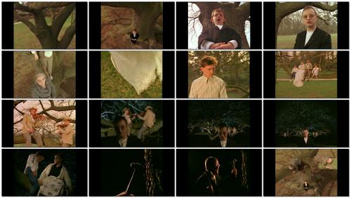 XTC - Skylarking: 30th anniversary (2016) [Blu-ray Audio]