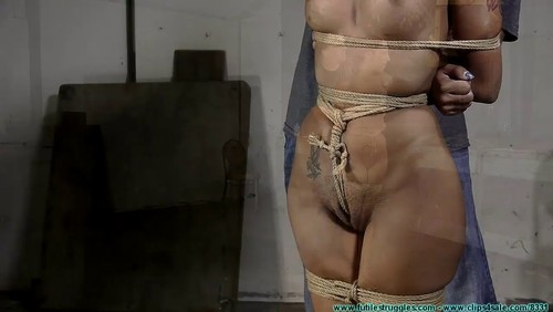 Futile Struggles : Stefania Box Hogtied-Part 1